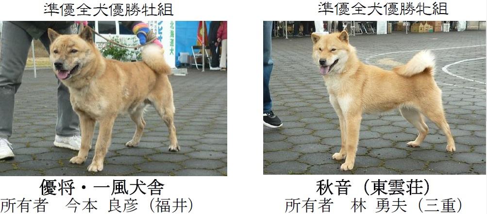 20170326岐阜07