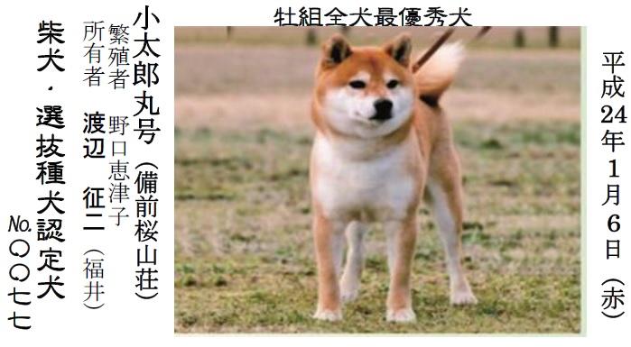 20170326岐阜11
