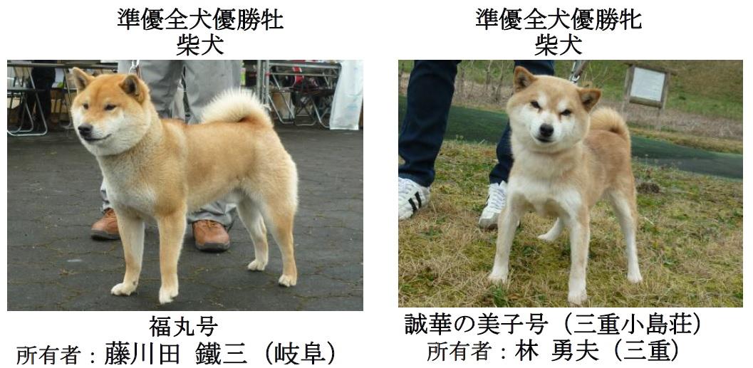 20170326岐阜12