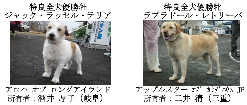 20170326岐阜13
