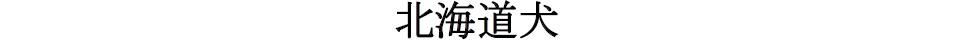 20170326岐阜14