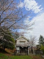 4月9日 蔵座敷とロケセットの間の桜2