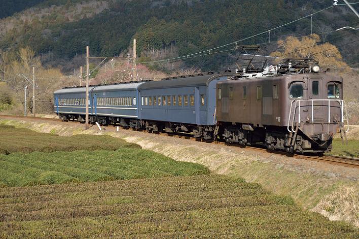 DSC_1035-4