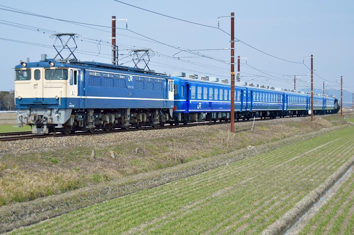 DSC_1000-5-1.png