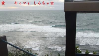 s-DSCF9314.jpg