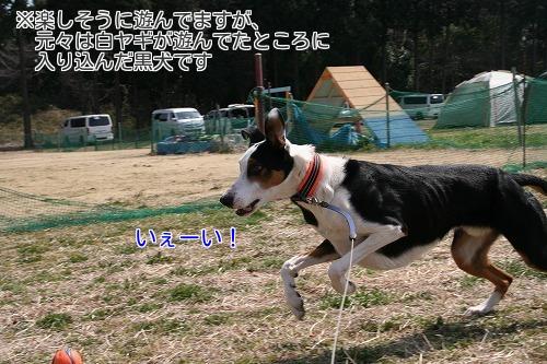 20170318_03.jpg