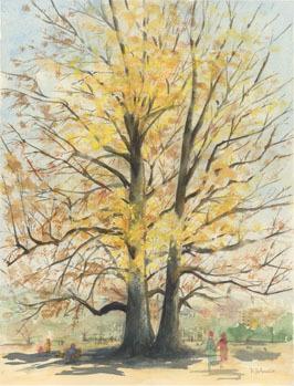 3_1新宿御苑ユリの木