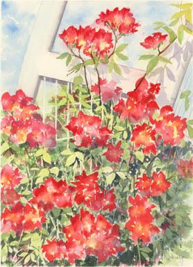 3_15 代々木公園花のアーチ2