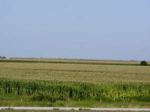 ネブラスカのトウモロコシ畑