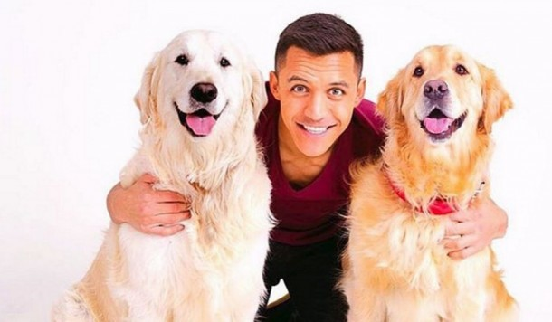 Arsenal fans create bizarre banner dedicated to Alexis Sanchez DOGS to help show their love for contract rebel star