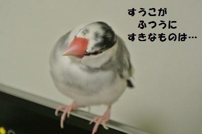 DSC_6999.jpg