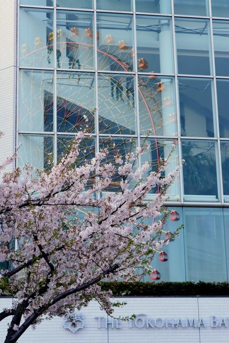 ランドマーク桜