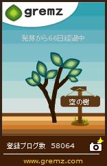 20170320_空の樹21本目_66日目.jpg