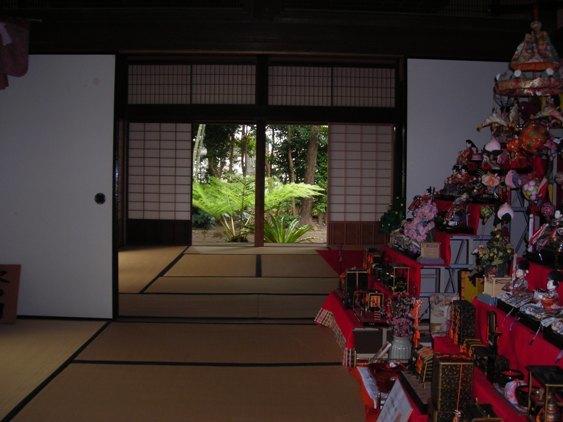 DSCN6493izumi4.jpg