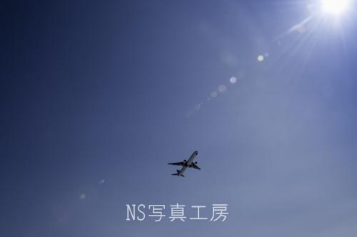 _DSC8127.jpg