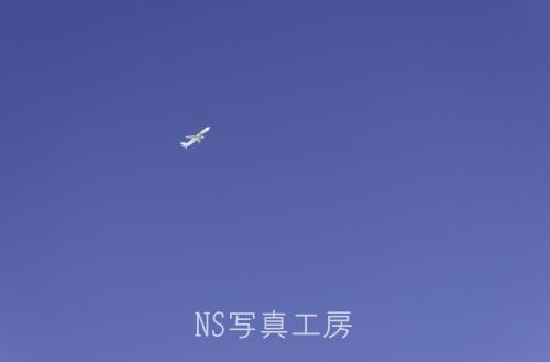 _DSY1342.jpg