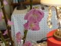 ナンフェア 桃の花