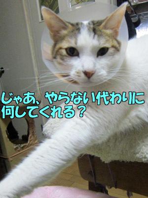 170401-03.jpg