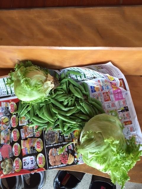 0418美恵子's野菜