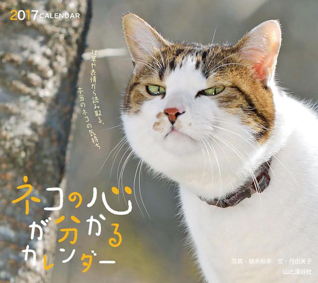 猫入りカレンダー