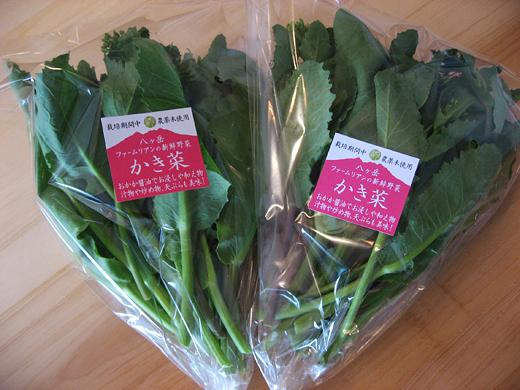 new野菜1