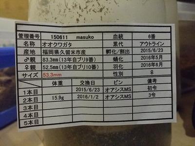20161014_215134.jpg