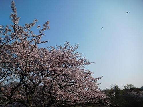 奥須磨公園1