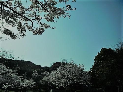 奥須磨公園3-2