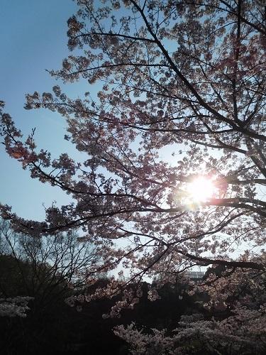奥須磨公園4