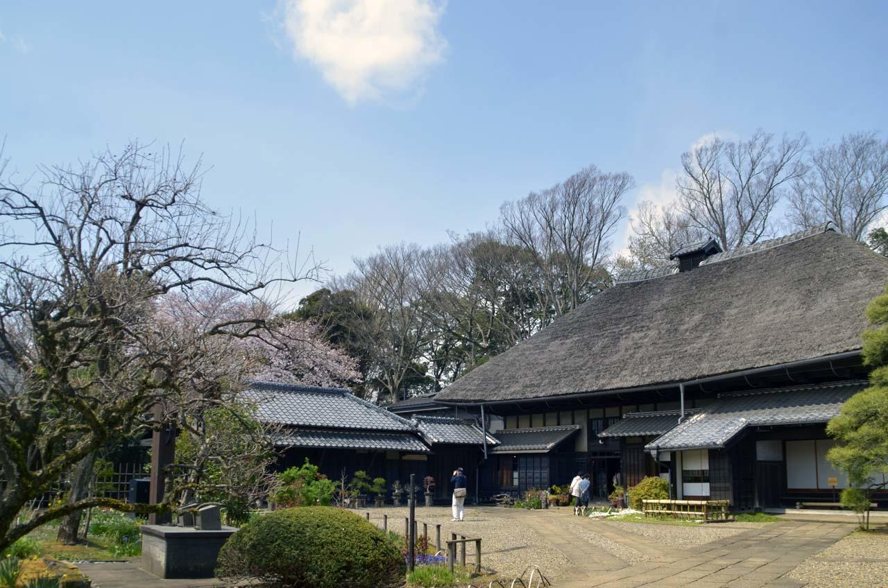_D708118旧家と桜
