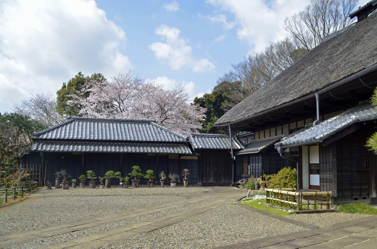 _D708065旧家と桜