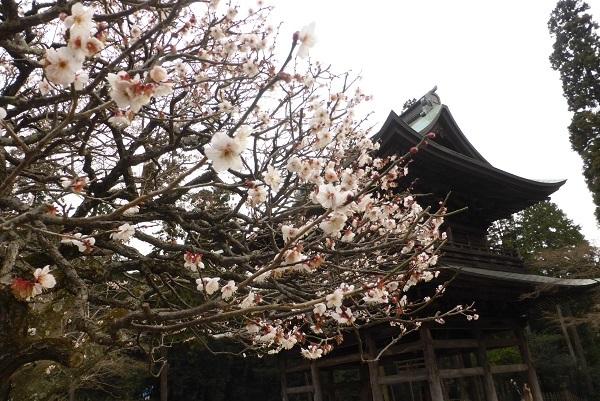 14-28 円覚寺