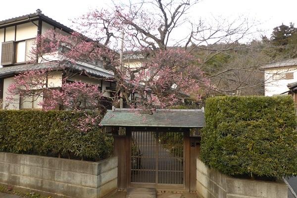 22-58 鎌倉の家