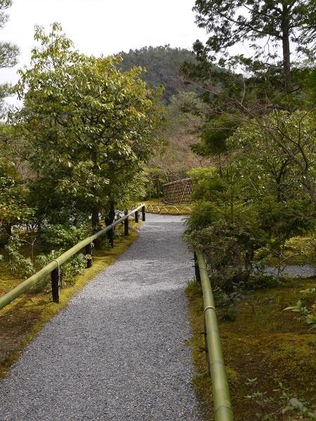 光悦寺の道