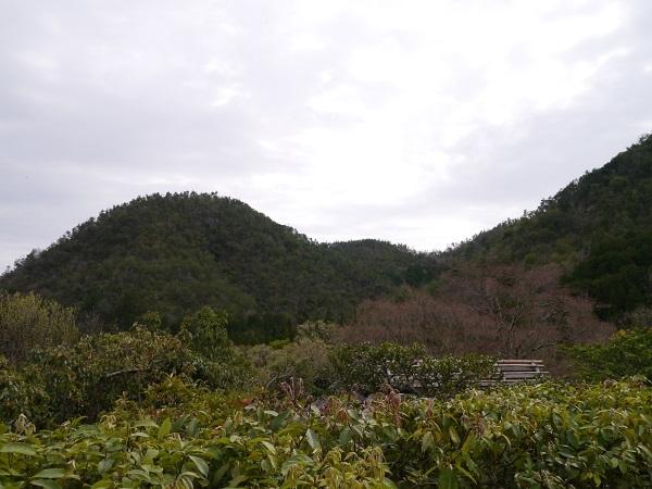 光悦寺から見た山