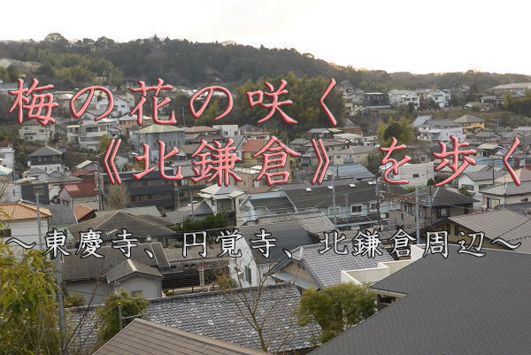 北鎌倉 タイトル画像