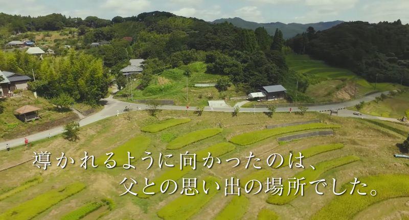 natsuminohotaru1.jpg