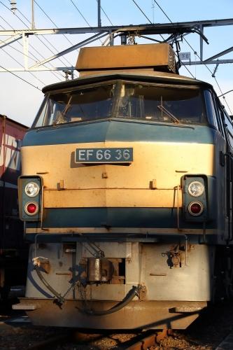 EF66 36 富士入換
