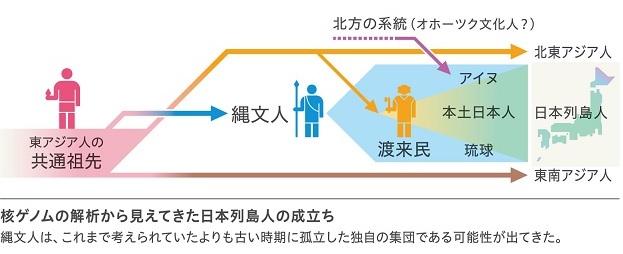 縄文人 ゲノム解析