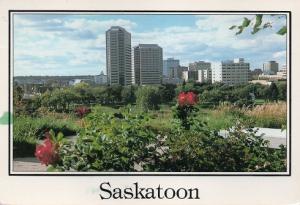 サスカトゥーン(Saskatoon)