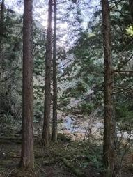 西椎屋滝壺4