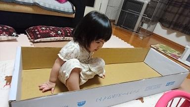 ワールドファミリー 箱2
