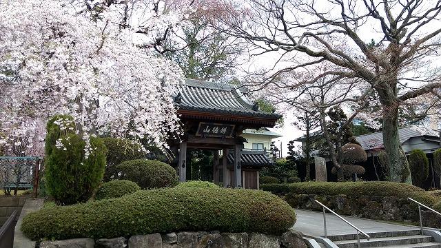 1704shinobu011.jpg