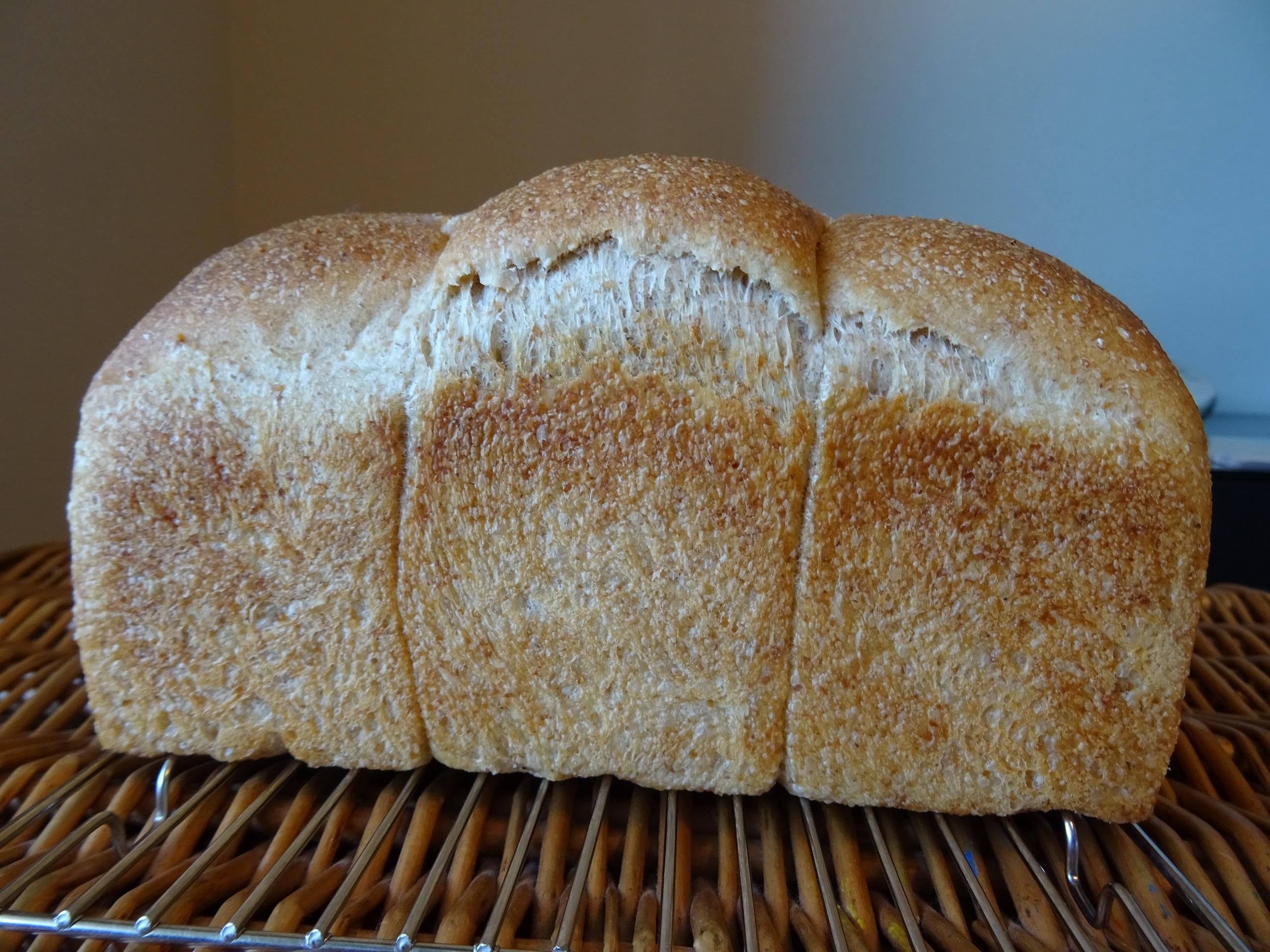 自家製酵母のライ麦食パン