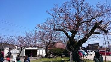 大山口駅前