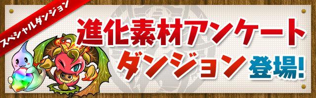 anke_sozai.jpg