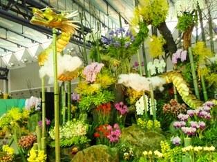 my-garden 255