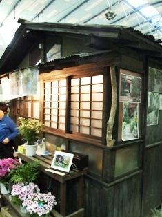 my-garden 205