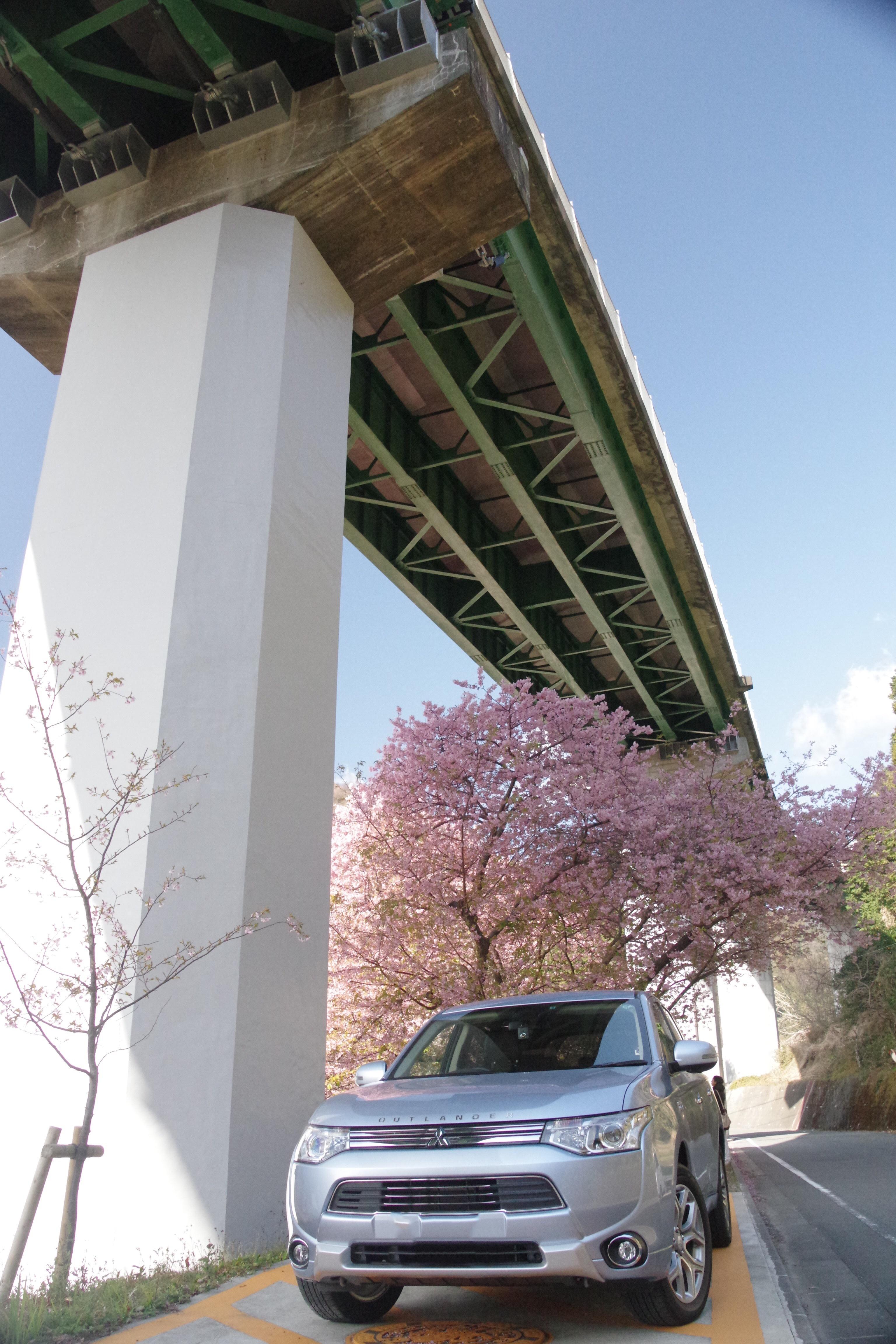 アウトランダーPHEV 桜 伊豆河津町 上条の桜