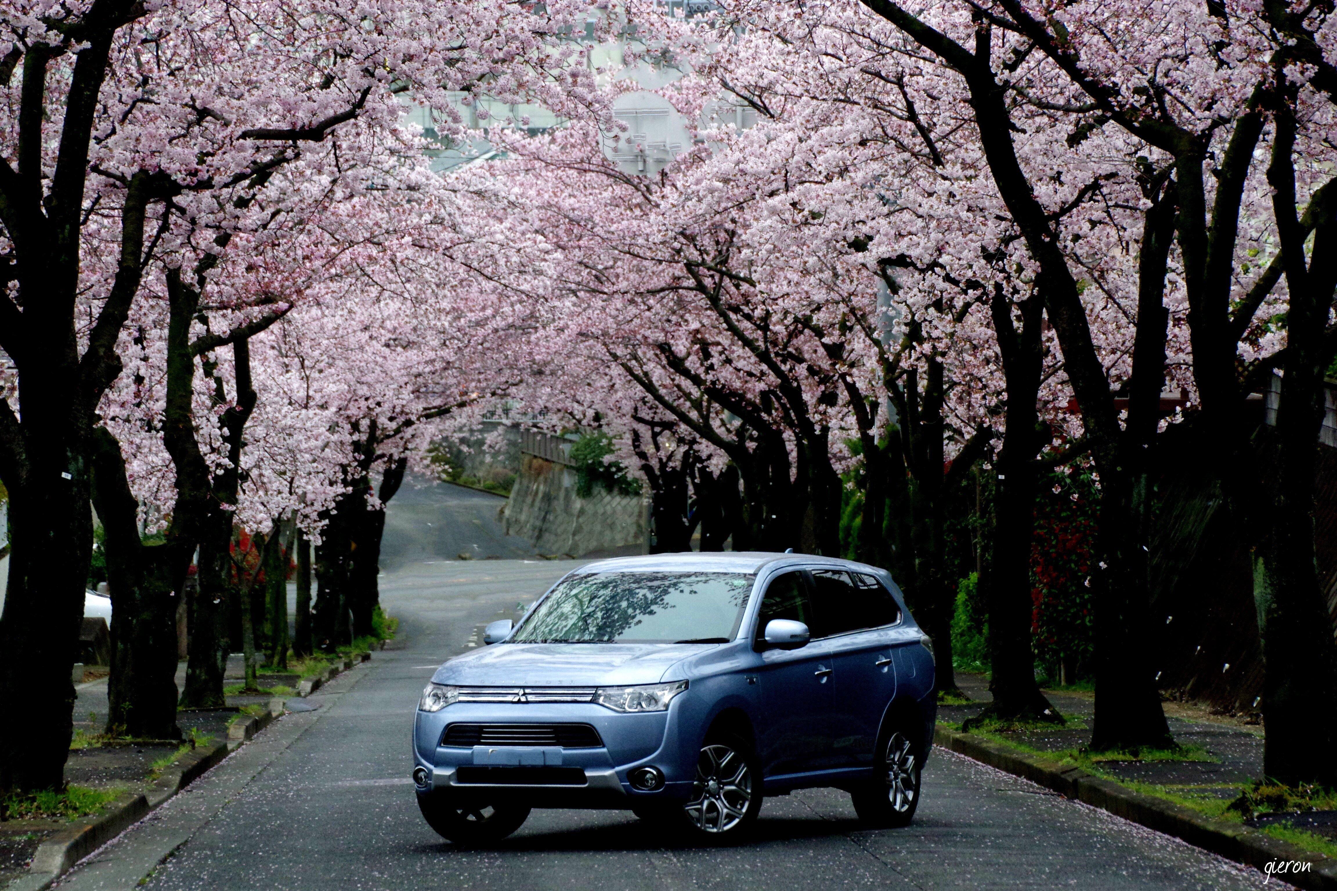 Mitsubishi Outlander PHEV cherry blossom